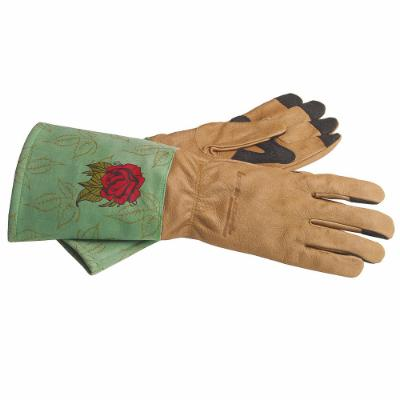 Signature Rose Gloves, 6-Piece Box Display (Women's M)